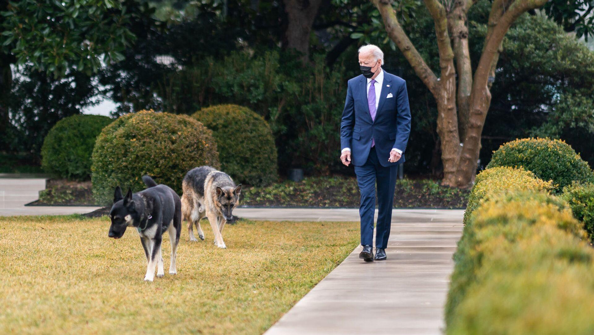 Americký prezident Joe Biden se svými psy Champem a Majorem - Sputnik Česká republika, 1920, 10.03.2021
