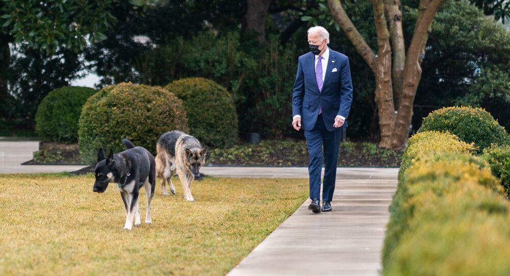 Americký prezident Joe Biden se svými psy Champem a Majorem