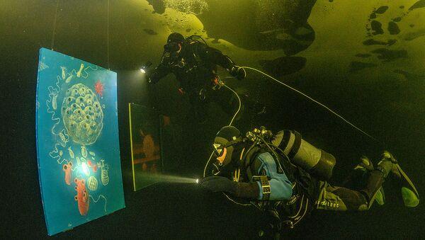 V Bílém moři za polárním kruhem byla zahájena první výstava pod ledem na světě - Sputnik Česká republika