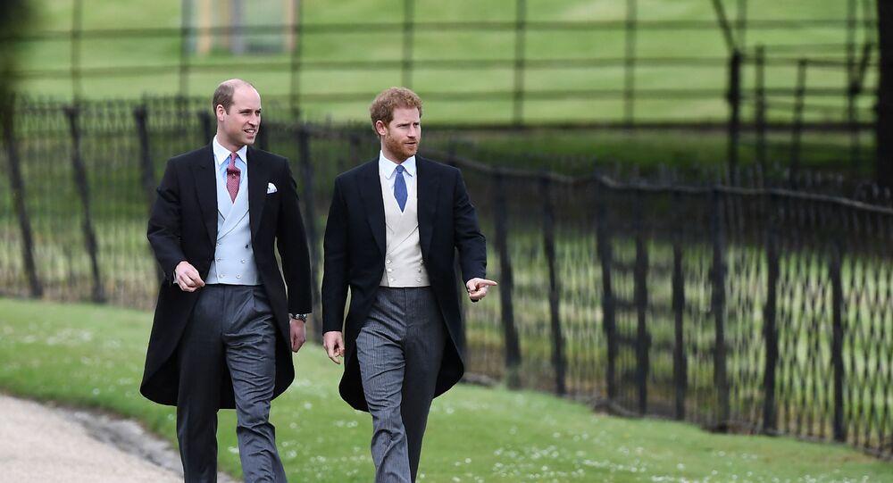 Prince William a princ Harry