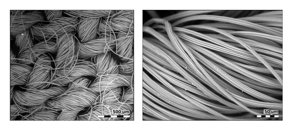 Nedílná součást nynější doby: Roušky pod objektivem mikroskopu