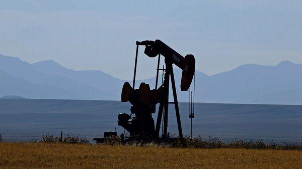 Těžba ropy v USA. Ilustrační foto - Sputnik Česká republika