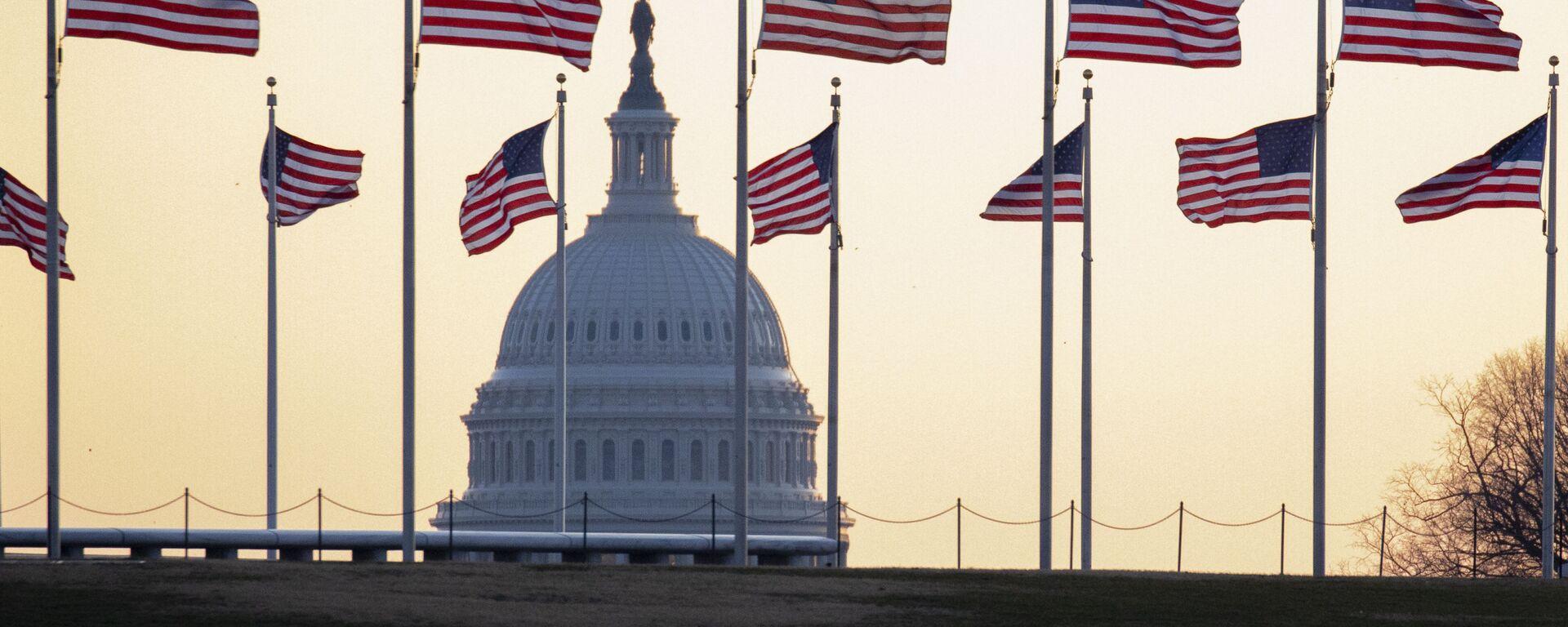 Americké vlajky ve Washingtonu - Sputnik Česká republika, 1920, 14.06.2021