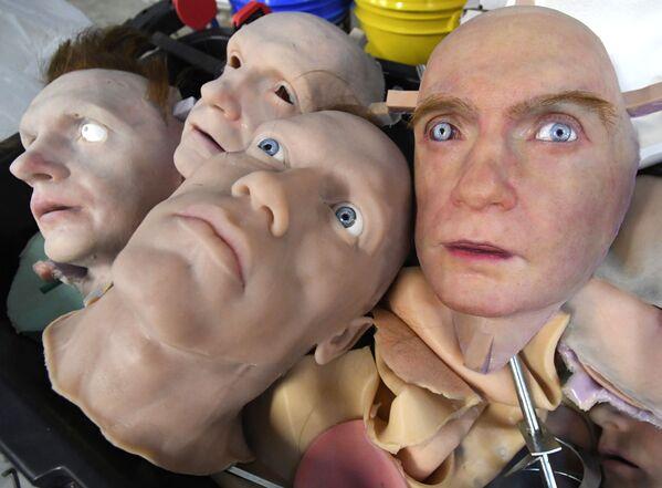 Experimentální vzorky v laboratoři pro vývoj umělé kůže ve Vladivostoku. - Sputnik Česká republika