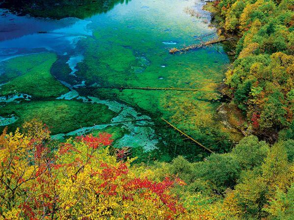 Čínské jezero Five Flower Lake. - Sputnik Česká republika