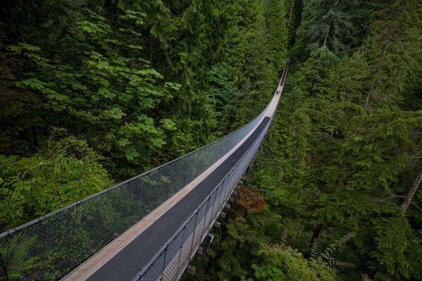 Visutý most Capilano ve Vancouveru, Kanada. - Sputnik Česká republika