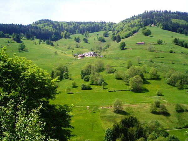 Pohoří Schwarzwald na jihozápadě Německa. - Sputnik Česká republika