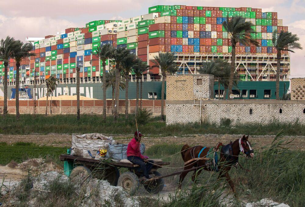 Egypťan se zapřaženým koněm na pozadí kontejnerové lodě Ever Given