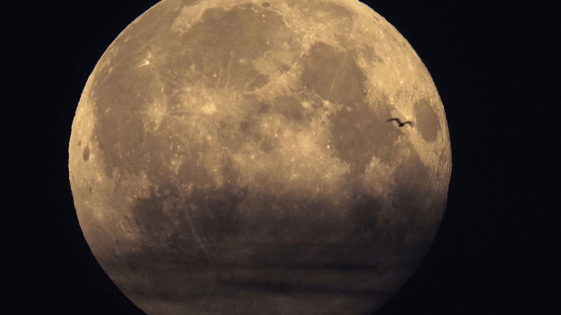 Měsíc - Sputnik Česká republika, 1920, 05.08.2021