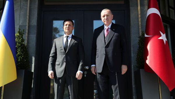 Zelenskyj a Erdogan - Sputnik Česká republika