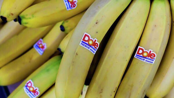 Banány - Sputnik Česká republika