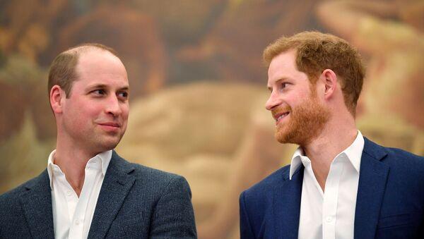 Prince William a Prince Harry  - Sputnik Česká republika