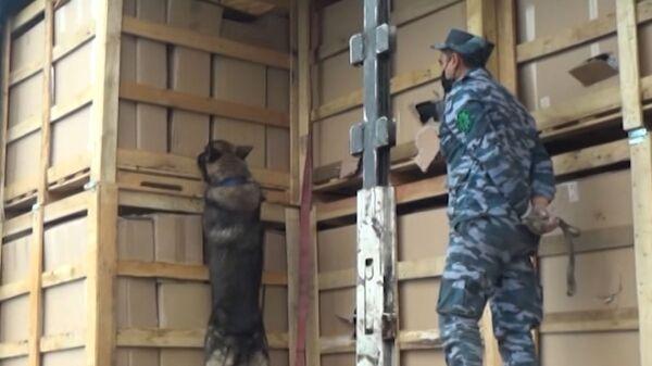 Таможенники Азербайджана пресекли контрабанду более 107 кг героина при транзите груза из Ирана в Чехию - Sputnik Česká republika