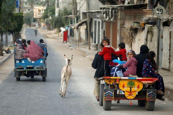 Kromě Palestinců z míst útoků utíkají i osli. - Sputnik Česká republika