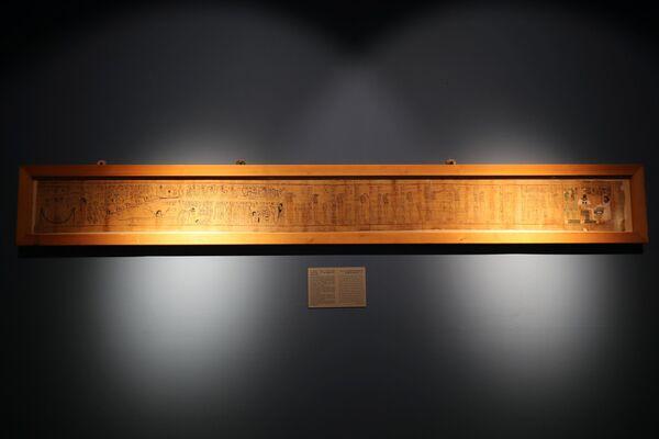 Původně výstava obsahovala jen okolo 36 exponátů. - Sputnik Česká republika