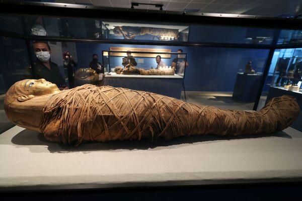 Návštěvník si prohlíží mumii v káhirském muzeu na letišti.  - Sputnik Česká republika