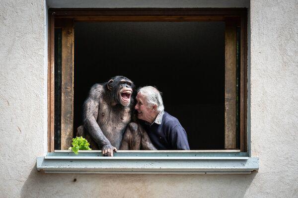 Majitel zoo Pierre Tivillon se směje spolu se šimpanzem ve Francii - Sputnik Česká republika