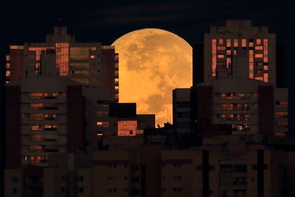 Měsíc zacloněný budovami. Brasília, Brazílie. - Sputnik Česká republika