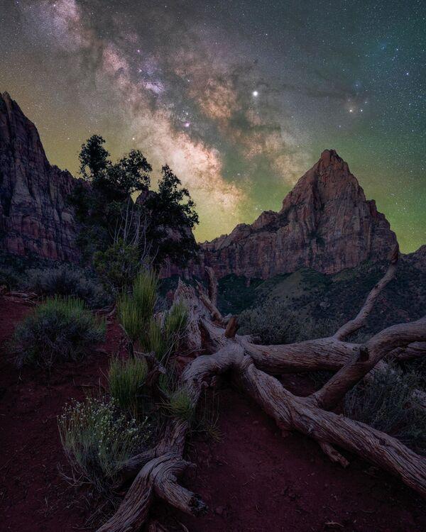 Národní park Zion, Utah, USA. Fotograf – Brandt Ryder - Sputnik Česká republika