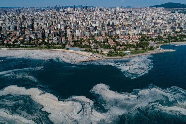 Ukázalo se, že se hladina kyslíku v mořské vodě vážně snížila, vzhledem k čemuž je nyní potřeba přijmout mimořádná opatření. - Sputnik Česká republika