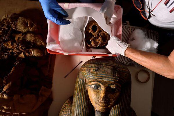 Vědci při transportu egyptské mumie z Bergama do Milána - Sputnik Česká republika
