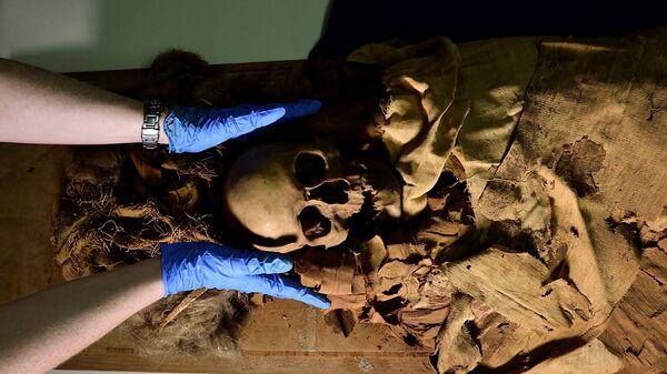 Подготовка мумии к перевозке из археологического музея Бергамо в миланскую больницу для прохождения томографии - Sputnik Česká republika