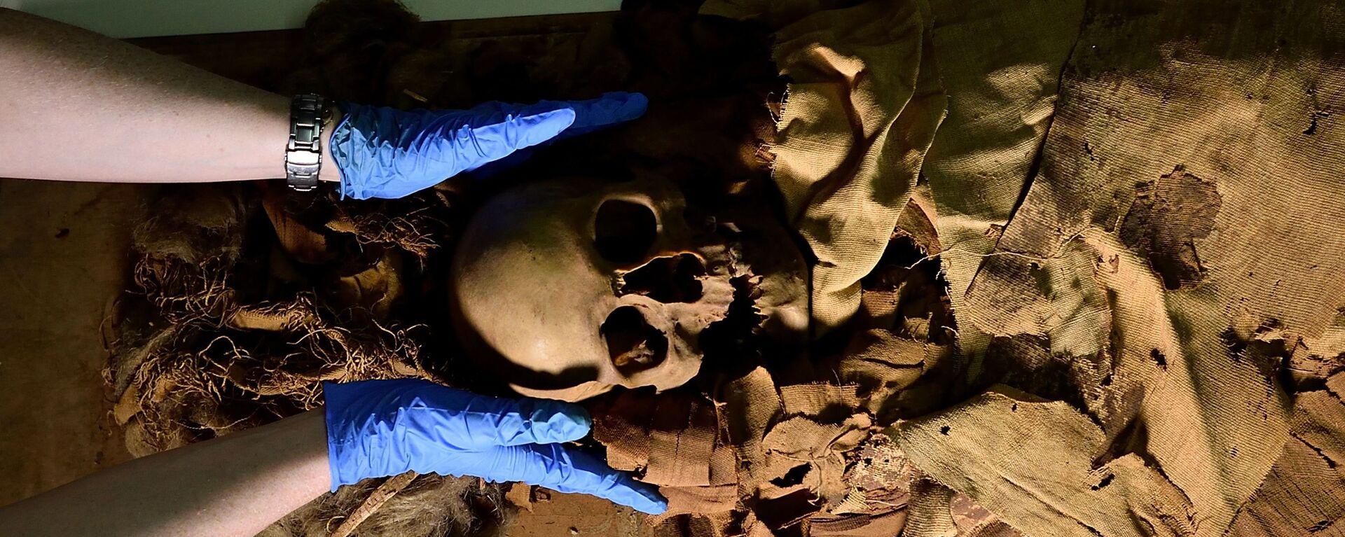 Příprava mumie k přepravě z Archeologického muzea v Bergamu do milánské nemocnice k provedení tomografie - Sputnik Česká republika, 1920, 23.06.2021