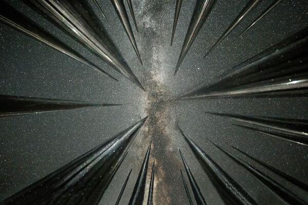 Foto s názvem Star Fall od čínského fotografa Wang Zhenga - Sputnik Česká republika