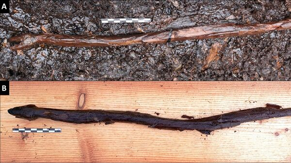 Фигурка змеи, найденная в городище Ярвенсуо - Sputnik Česká republika