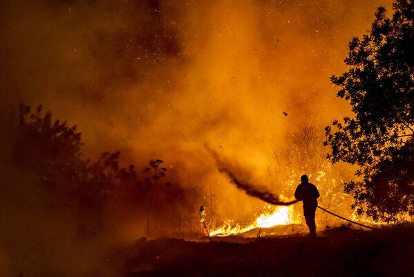 Lesní požár na Kypru v noci 3. července.  - Sputnik Česká republika