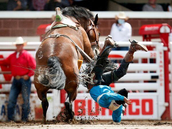 Jezdec Evan Betony odhozený koněm během rodea Calgary Stampede. - Sputnik Česká republika