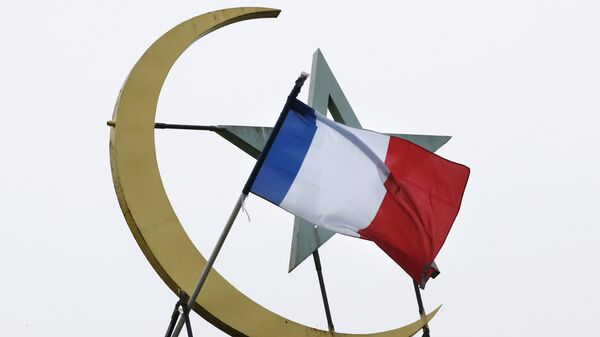 Французский флаг у соборной мечети в Париже - Sputnik Česká republika