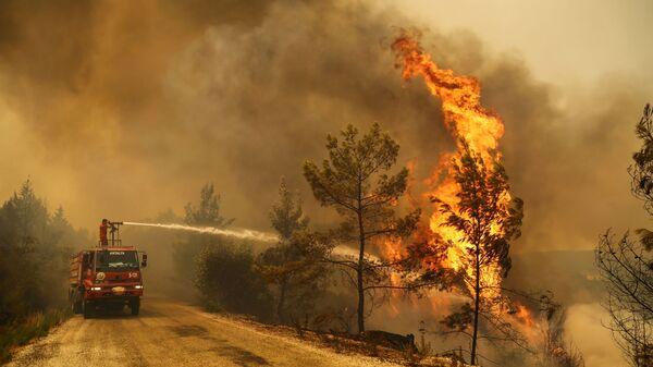 Пожарный тушит лесной пожар возле города Манавгат, к востоку от курортного города Анталия, Турция - Sputnik Česká republika