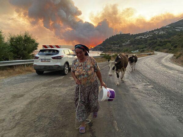 Žena se svými hospodářskými zvířaty během požárů v Turecku - Sputnik Česká republika