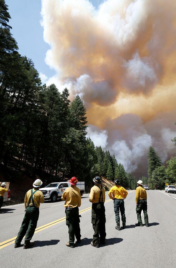 Пожарные наблюдают за клубами дыма от пожаров в штате Калифорния, США  - Sputnik Česká republika