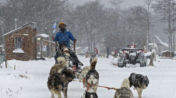 Катание на собачьей упряжке в комплексе Siberianos de Fuego, где туристы могут кататься на санях в долине de las Cotorras, недалеко от города Ушуая, на архипелаге Огненная Земля, Аргентина - Sputnik Česká republika