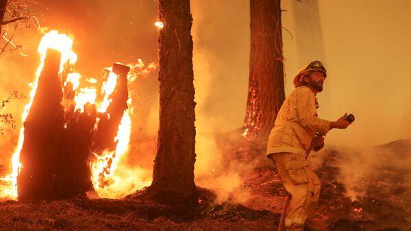 Пожарный на линию огня во время природного пожара Дикси возле Тейлорсвилля, Калифорния, США - Sputnik Česká republika