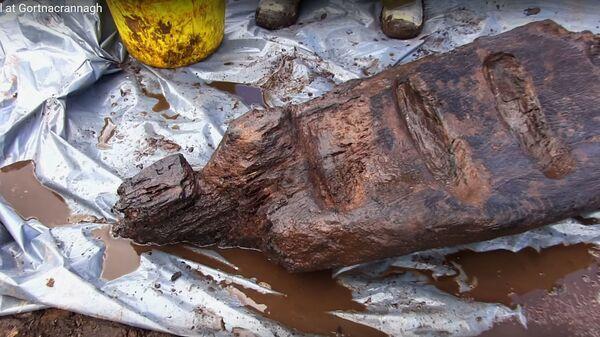 Обнаруженный 1600-летний деревянный идол на западе Ирландии  - Sputnik Česká republika