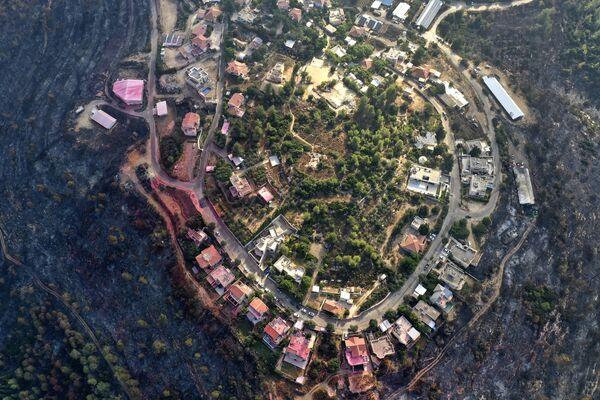 Spálené lesy kolem vesnice Givat Yearim, Izrael - Sputnik Česká republika