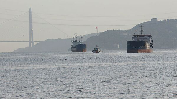 Два сухогруза под турецким и российским флагами столкнулись в проливе Босфор - Sputnik Česká republika