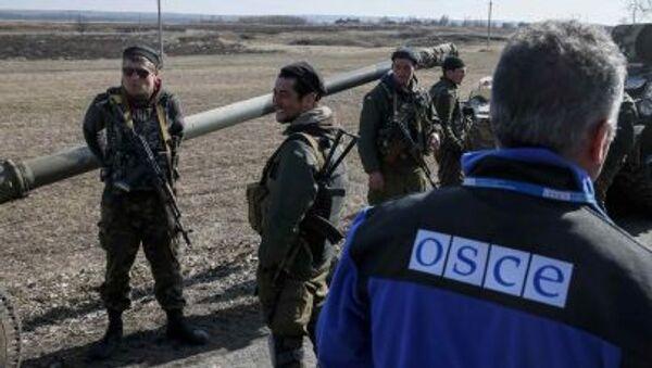 Člen zvláštní mise OBSE - Sputnik Česká republika