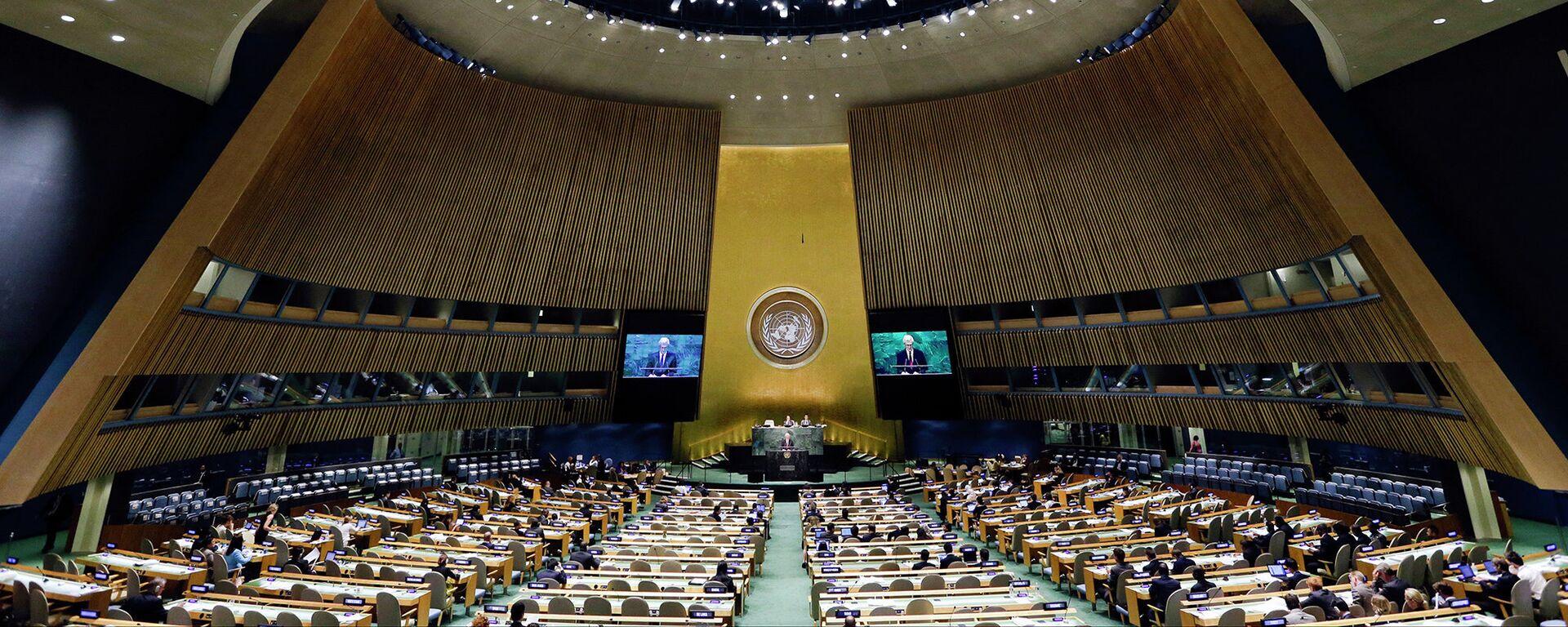 Valné shromáždění OSN - Sputnik Česká republika, 1920, 03.06.2021