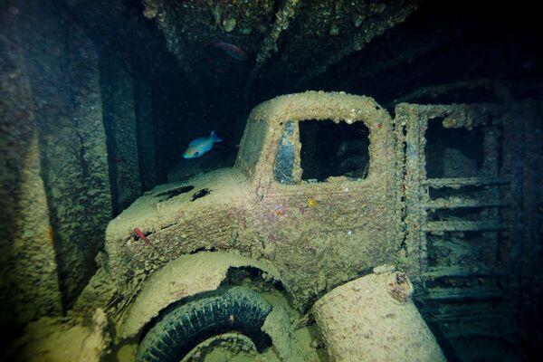 Náklad přepravní lodi Thistlegorm, která se potopila v roce 1941 - jeden z nejunikátnějších podvodních artefaktů v Suezském zálivu. - Sputnik Česká republika