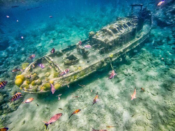 Potopený remorkér v blízkosti ostrova Curacao, Karibské moře - Sputnik Česká republika
