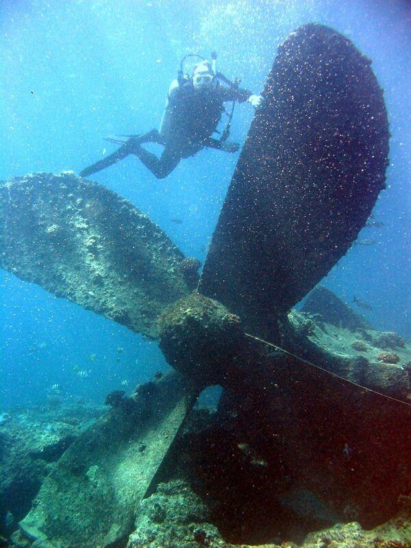Potápěč během ponoření, Pearl a Hermes, Hawaii. - Sputnik Česká republika