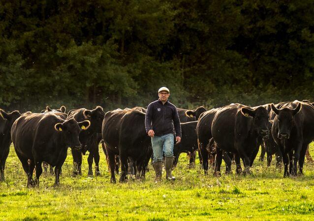 Majitel farmy MCH Angus Robert W.L. van Es