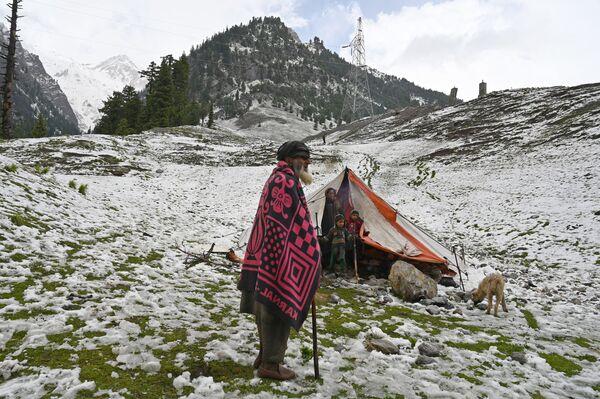 Kašmírští nomádi ve stanu v osadě Sonmarg, Indie. - Sputnik Česká republika