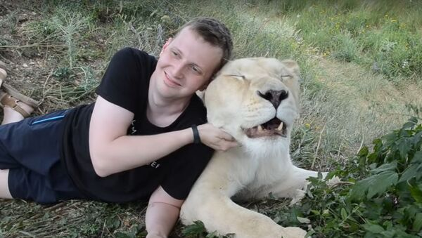 S dravcem v rukou. Turisté překonávají strach, aby se vyfotografovali s bílou lvicí - Sputnik Česká republika