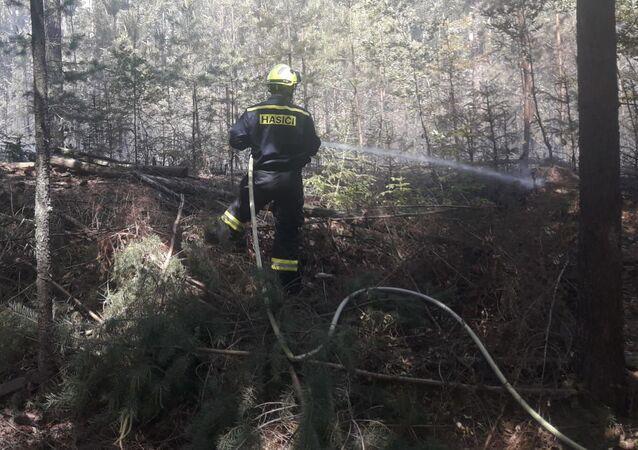 Český hasič likviduje požár lesa. Ilustrační foto