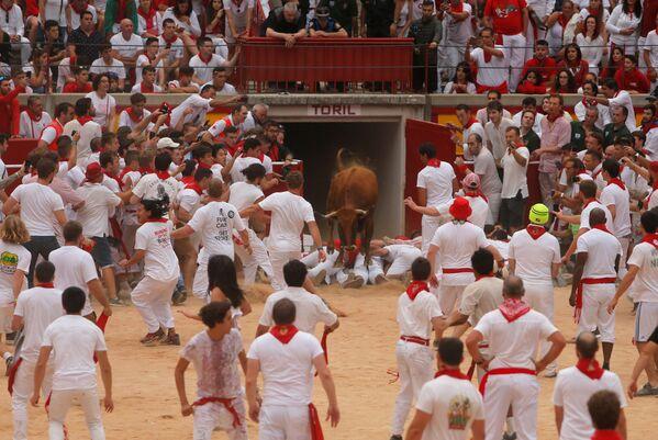Začátek běhu býků na festivalu San Fermín v Pamploně, Španělsko  - Sputnik Česká republika